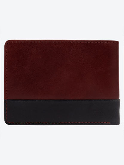 Maroon Colour Blocked Leather Wallet