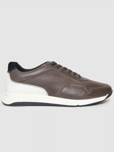 Brown Colourblocked Leather Sneakers